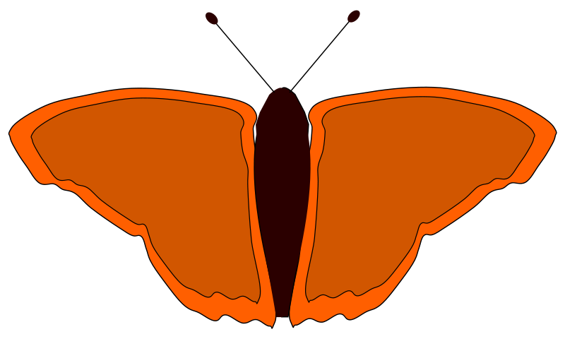 free vector Orange butterfly