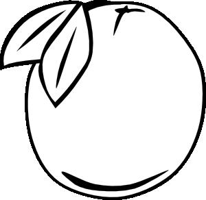 free vector Orange Outline Fruit clip art
