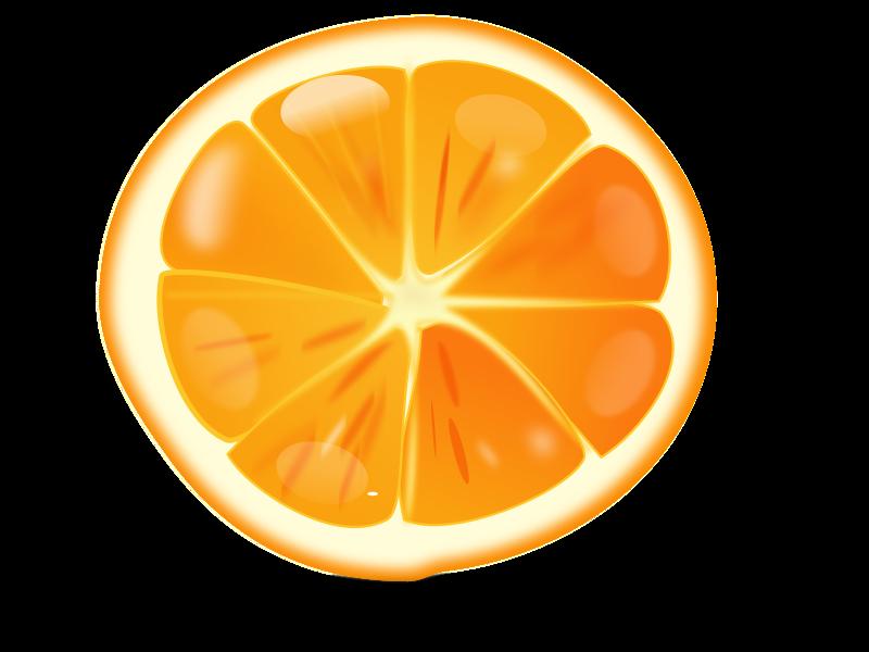 free vector Orange slice 102018