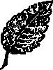 free vector Outline Leaf clip art