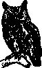 free vector Owl clip art 118297
