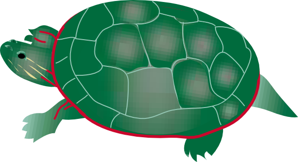 painted turtle clip art free vector 4vector rh 4vector com turtle clip art images free turtle clipart freeware