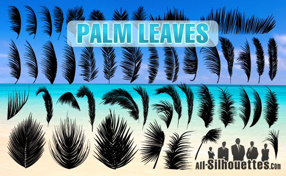 free vector Palm Leaves