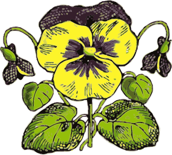 free vector Pansy clip art