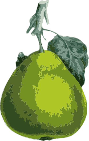 free vector Pear clip art