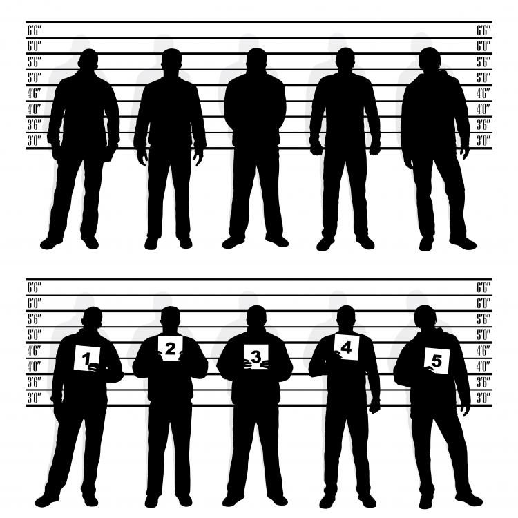 free vector People silhouette vector