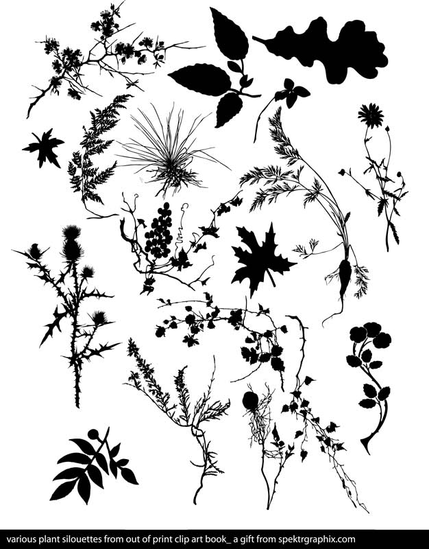 free vector PLANT SILOUETTES