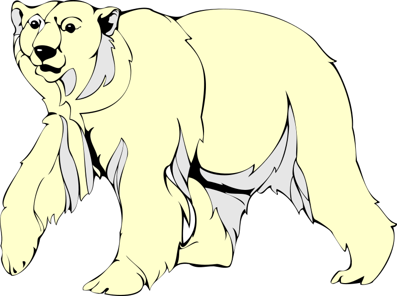 free vector Polar Bear 2