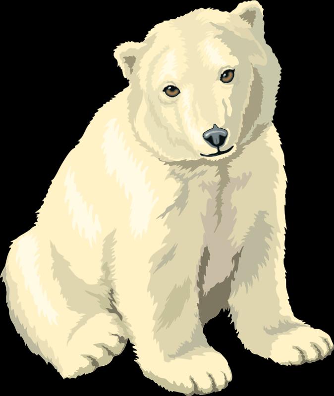 free vector Polar Bear