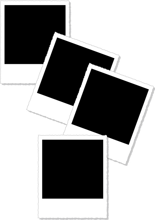 free vector Polaroid photographs of vector-style material