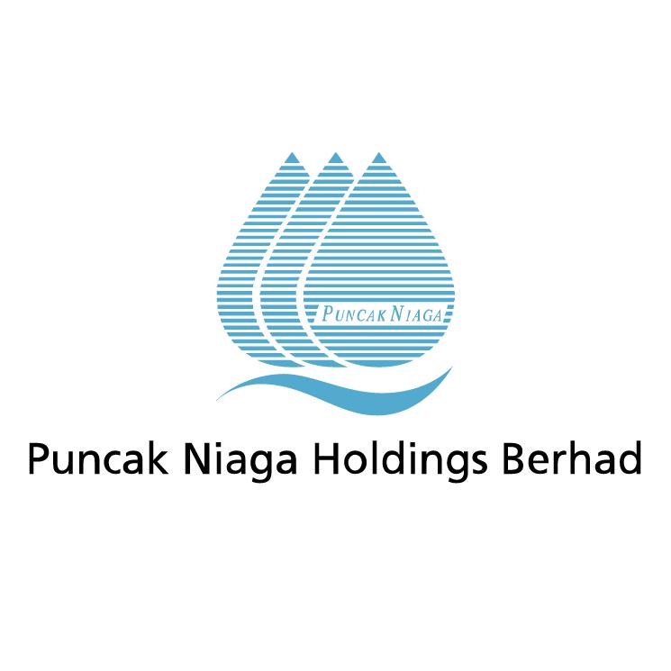 free vector Puncak niaga holdings