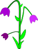 free vector Purple Bell Flowers clip art