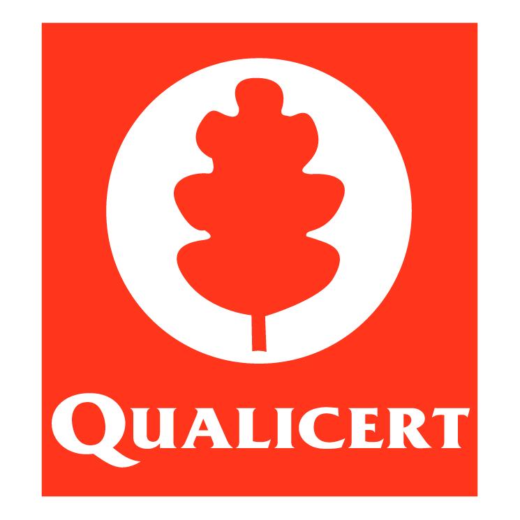 free vector Qualicert
