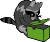 free vector Raccoon Opening Box clip art