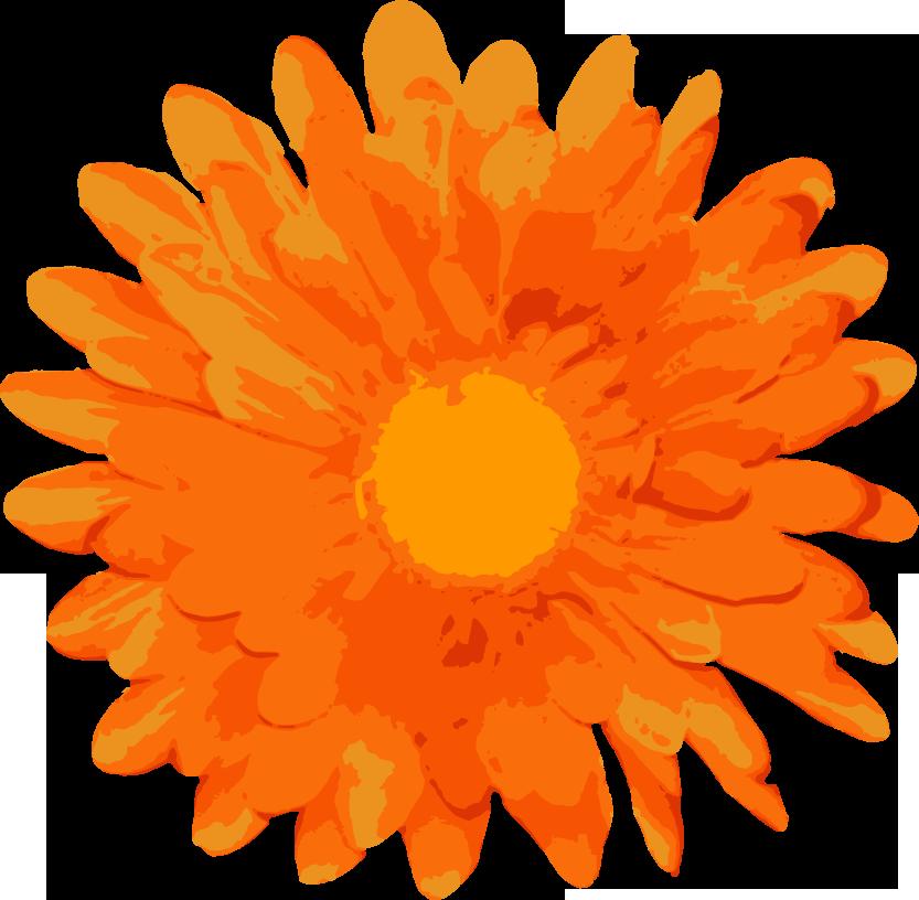 free vector Random Free Flower Vectors