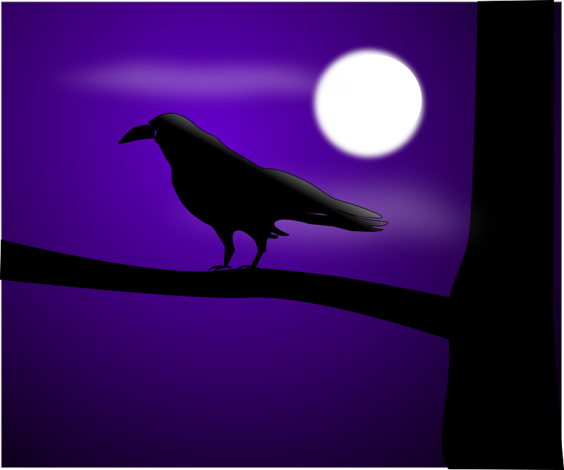 free vector Raven illustration