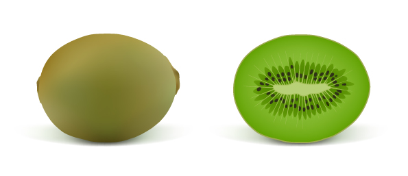 free vector Realistic fruit 02 vector