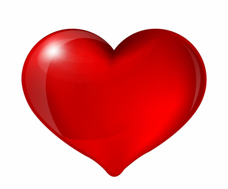 free vector Red heart