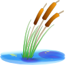 free vector Reed clip art
