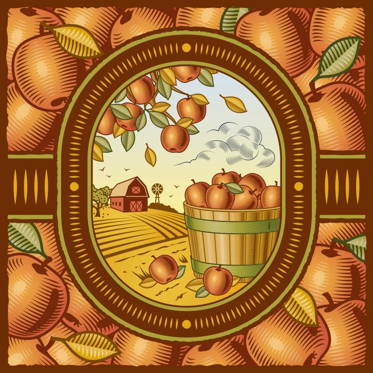 free vector Retro farm harvest 01 vector