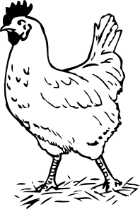 free vector Rooster clip art