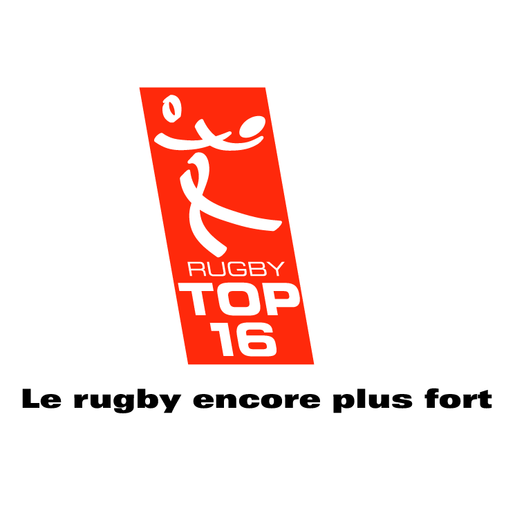 free vector Rugby top 16