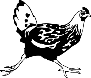 free vector Running Chicken clip art