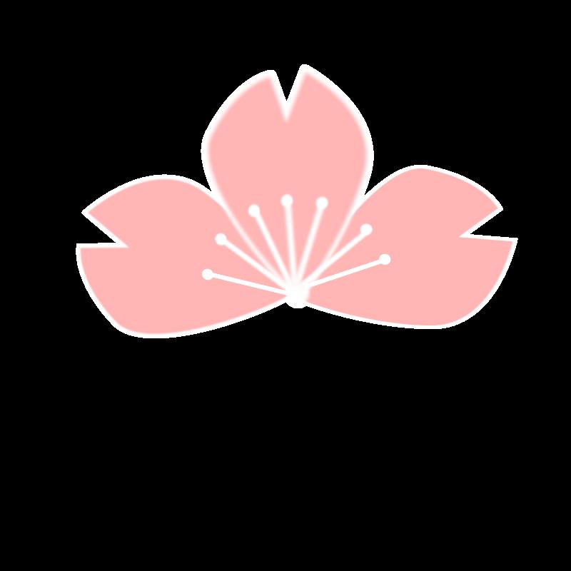 free vector Sakura