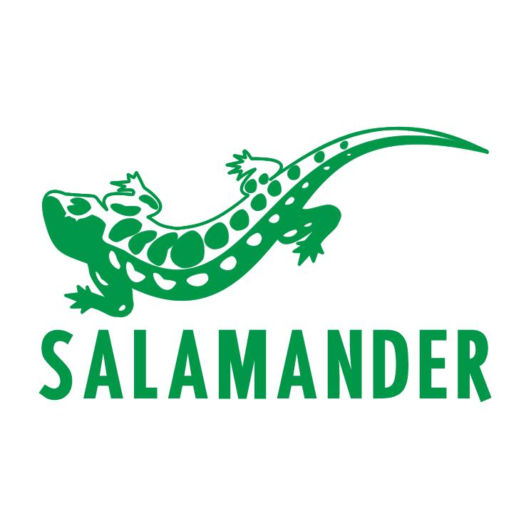 free vector Salamander 1