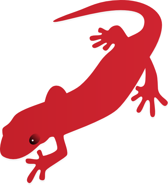free vector Salamder clip art