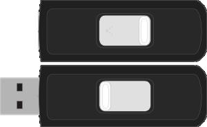 free vector Sandisk Cruzer Micro clip art