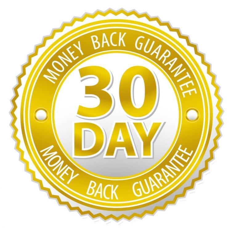 free vector Satisfaction guarantee label 01 vector
