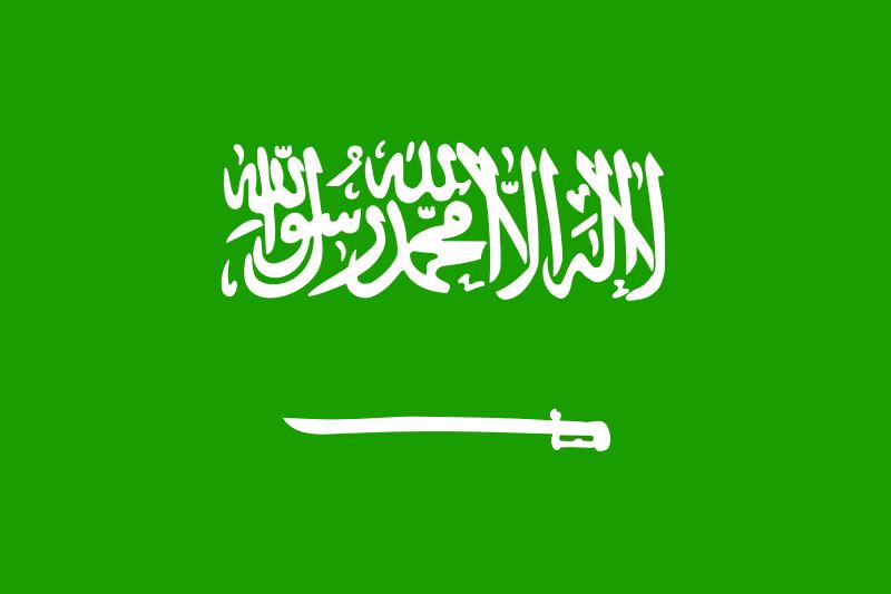 free vector Saudi arabia