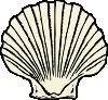 free vector Scallop Shell clip art