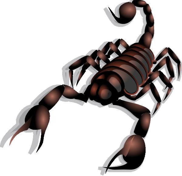 free vector Scorpion clip art