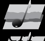 free vector SCPP logo