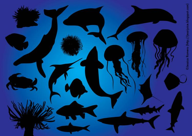 free vector Sea Life