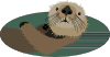 free vector Sea Otter clip art