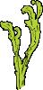 free vector Sea Weed clip art