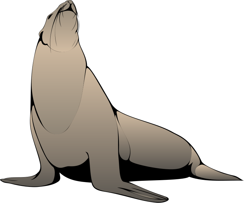 free vector Seal 2