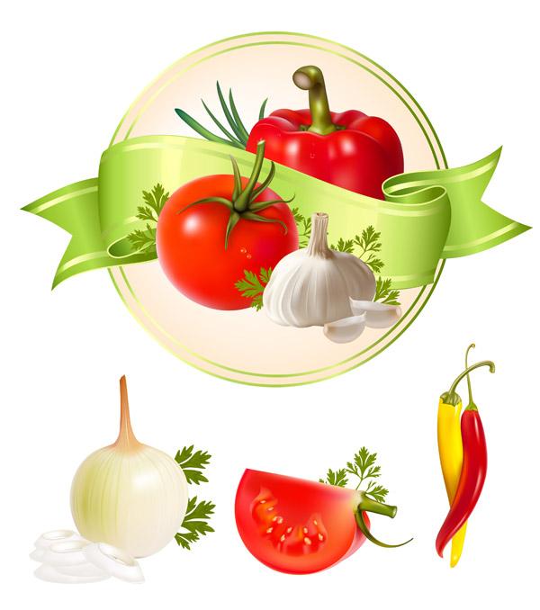 free vector Several vegetables vector