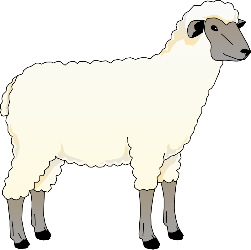 free vector Sheep 5
