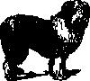 free vector Sheep Dog clip art