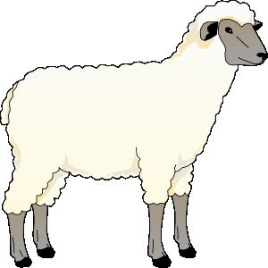 free vector Sheep Ewe clip art