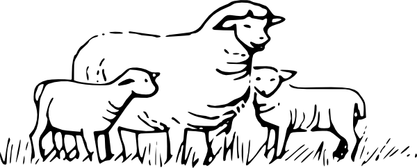free vector Sheep Standing clip art
