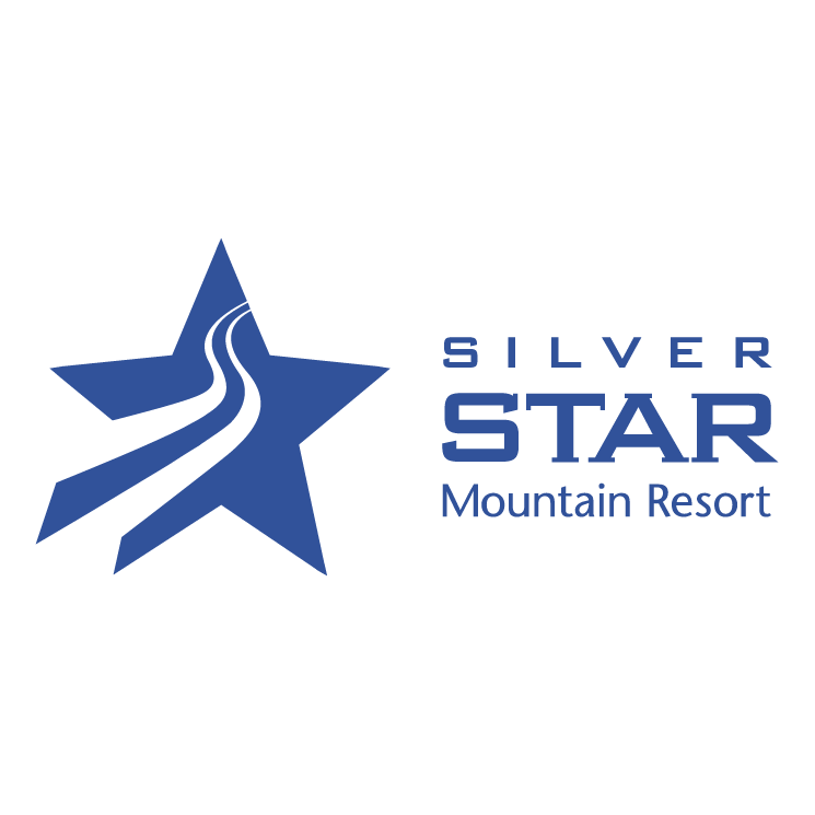 free vector Silver star