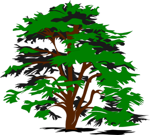 simple tree clip art free vector 4vector rh 4vector com tree clipart free download free clipart pine tree
