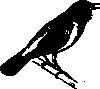 free vector Singing Bird clip art