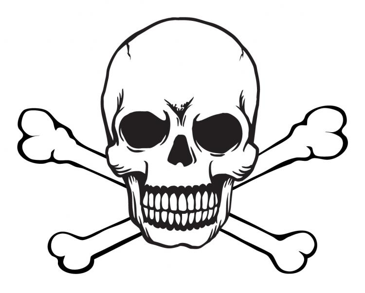 free vector Skull and crossbones