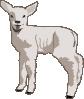 free vector Small Sheep clip art